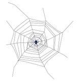 Het Web van de maïskolf Stock Foto's