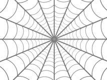 Het Web van spinnen vector illustratie