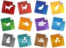 Het Webknopen van het huisdier - sticker Stock Fotografie
