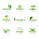 Het Webpictogram Vastgesteld Groen Logo Collection van het Eco Vriendschappelijk Organisch Natuurlijke Product Royalty-vrije Stock Foto