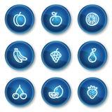 Het Webpictogrammen van vruchten, blauwe cirkelknopen Stock Afbeelding