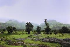 Het weelderige groene landschap met moesson betrekt het onderdompelen op de bergen bij de achtergrond stock foto
