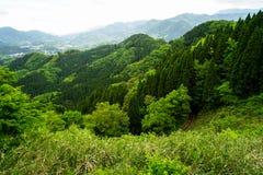 Het weelderige panorama van de groenberg, rijweg en stadsmening van verafgelegen Stock Fotografie