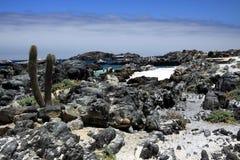 Het Weergeven op natuurlijke turkooise die pool door scherpe rotsen met altostratus wordt omringd betrekt in de horizon stock afbeelding