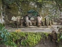 Het Weergeven op roestige ru?nes van oude die 19de eeuw verliet fabriek Fabrica DA Cidade en Fabrica DA Vila, in bos wordt verlor stock foto's