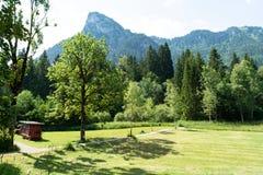Het Weergeven van de gemaaide weiden op de achtergrond van de bergen waarop er zijn combineert stock fotografie