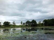 Het Weergeven van de kust van een kalm meer met grijze bewolkte die hemel en de bomen en het gras behandelde heuvels langs de ban stock foto