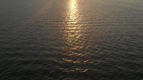 Het Weergeven van een hommel die over de oceaan naar aan de zonsondergang vliegen openbaart stock footage