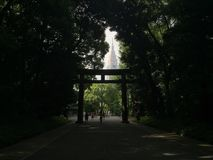 Het Weergeven van NTT Docomo Yoyogi door a door bomen leidde natuurlijk tot kader in Tokyo, Japan royalty-vrije stock foto's