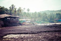 Het weggaan Anjuna strandpanorama op eb met wit nat zand en groene kokospalmen, Goa, India Royalty-vrije Stock Afbeeldingen