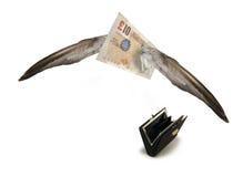 Het wegvliegen van Brits pond Stock Fotografie