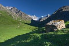 Het weiland van bergen royalty-vrije stock foto