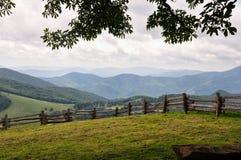 Het weiland van de berg Stock Afbeelding
