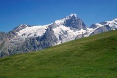 Het weiland van de berg stock foto's