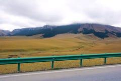 Het weiland van het hoogland stock foto