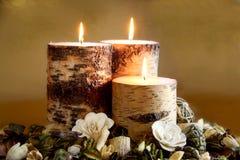 Het Welriekend mengsel van gedroogde bloemen en kruiden van de winter Royalty-vrije Stock Afbeeldingen