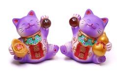 Het wenken Katten Stock Afbeelding