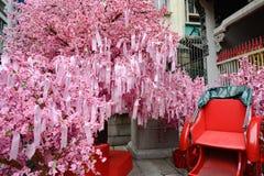 Het wensen van boom en riksja, Hon Kong stock afbeelding