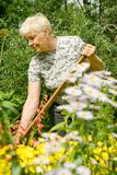 Het werk in een tuin Royalty-vrije Stock Afbeelding