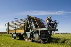 Het werk van de landbouw stock fotografie