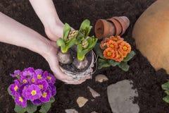 Het werk van de tuin royalty-vrije stock fotografie