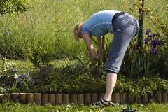 Het werk van de tuin Stock Afbeeldingen