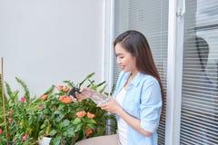 Het werk van de tuin Bescherming tegen ziekten en insecten door met beschermende maatregelen te bespuiten royalty-vrije stock foto