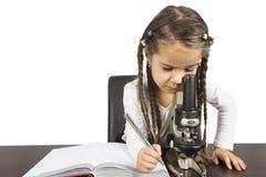 Het werk van het basisschoolmeisje aangaande wetenschapsproject Stock Fotografie