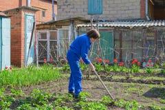 Het werken in de tuin Stock Foto