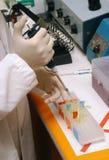 Het werken in het laboratorium royalty-vrije stock afbeelding