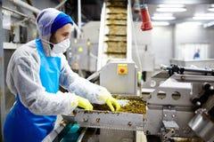Het werken in zeevruchtenfabriek Royalty-vrije Stock Fotografie
