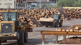 Het werkproces bij de zaagmolen, zware machines bij de zaagmolen stock footage