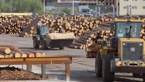 Het werkproces bij de zaagmolen, zware machines bij de zaagmolen stock videobeelden