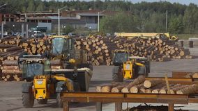 Het werkproces bij een zaagmolen, zware machines bij een houtverwerkingsfabriek, het werkproces bij een fabriek stock footage
