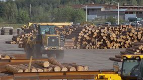 Het werkproces bij een zaagmolen, zware machines bij een houtverwerkingsfabriek, het werkproces bij een fabriek stock videobeelden