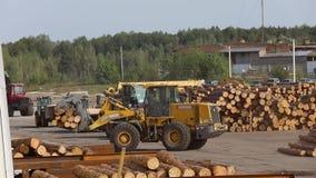 Het werkproces bij een zaagmolen, zware machines bij een houtverwerkingsfabriek, het werkproces bij een fabriek stock video
