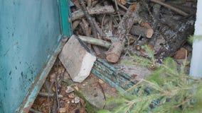Het werpen van brandhout in een schuur stock videobeelden