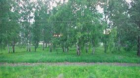 Het westen Siberisch landschap door het treinvenster stock videobeelden