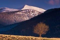 Het westen Tatras. Royalty-vrije Stock Afbeelding