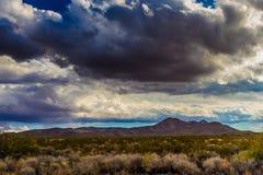 Het westen Texas Landscape van Woestijngebied met Heuvels Stock Fotografie