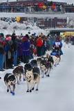 Het Westen van Abbie begint met de Zoektocht Yukon Stock Foto