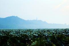 Het Westenmeer van plateauhangzhou Stock Afbeelding