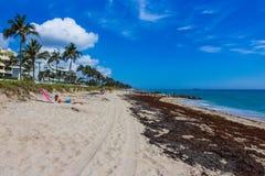 Het WESTENpalm beach, Florida -7 Mei 2018: Toeristen bij het Westenpalm beach in Florida stock afbeeldingen