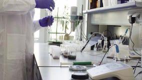 Het wetenschapper gietende water in gediplomeerde cilinder stock videobeelden