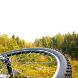 Het wiel van de fiets bij de herfstzonsondergang, geïsoleerde hoogste deel Royalty-vrije Stock Fotografie
