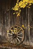 Het Wiel van de wagen Stock Fotografie