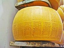 Het wiel van parmezaanreggiano Royalty-vrije Stock Foto
