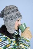 Het wijfje dat van de winter een kop thee drinkt Royalty-vrije Stock Fotografie