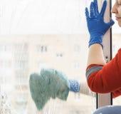 Het wijfje dient blauwe handschoenen in die venster schoonmaken royalty-vrije stock foto