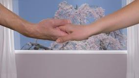 Het wijfje dient mannelijke hand op achtergrondvenster met mening over tot bloei komende sakuraboom in stock videobeelden